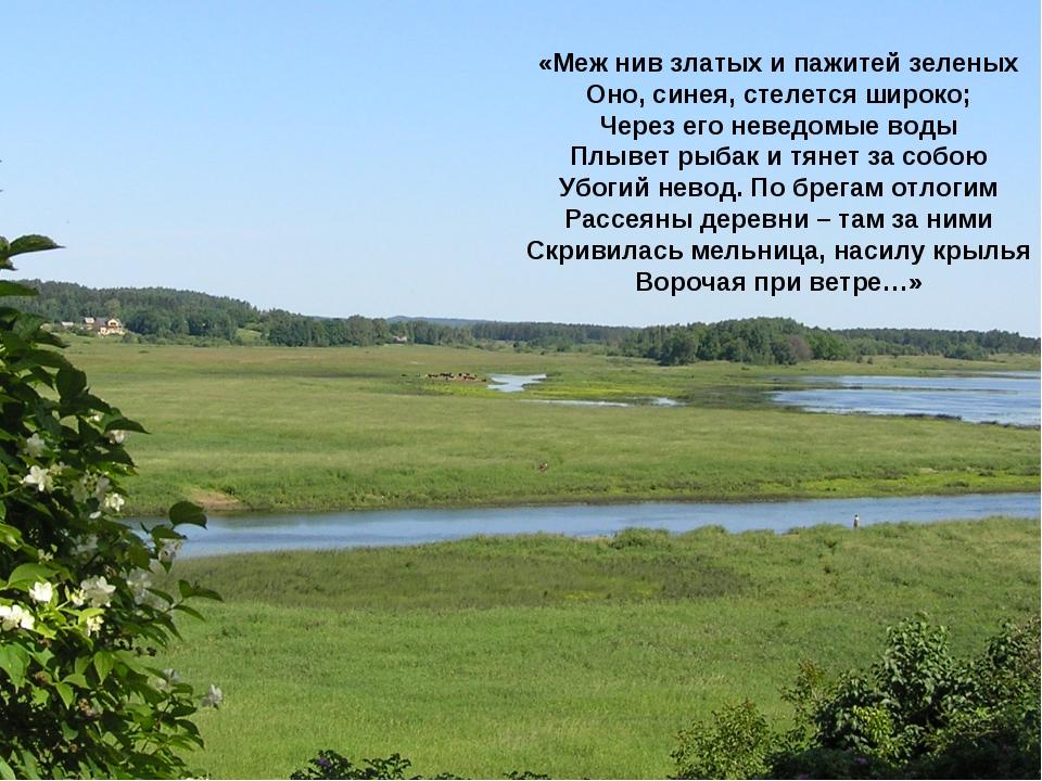«Меж нив златых и пажитей зеленых Оно, синея, стелется широко; Через его неве...