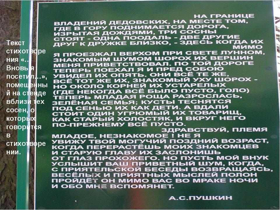 Текст стихотворения «…Вновь я посетил…», помещенный на стенде вблизи тех сосе...