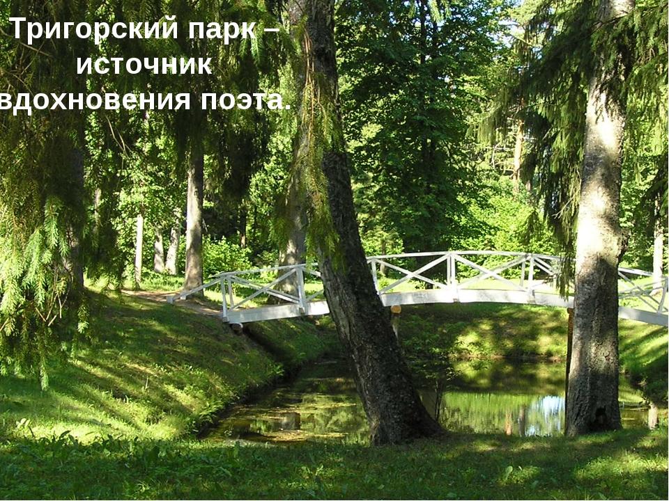 Тригорский парк – источник вдохновения поэта.