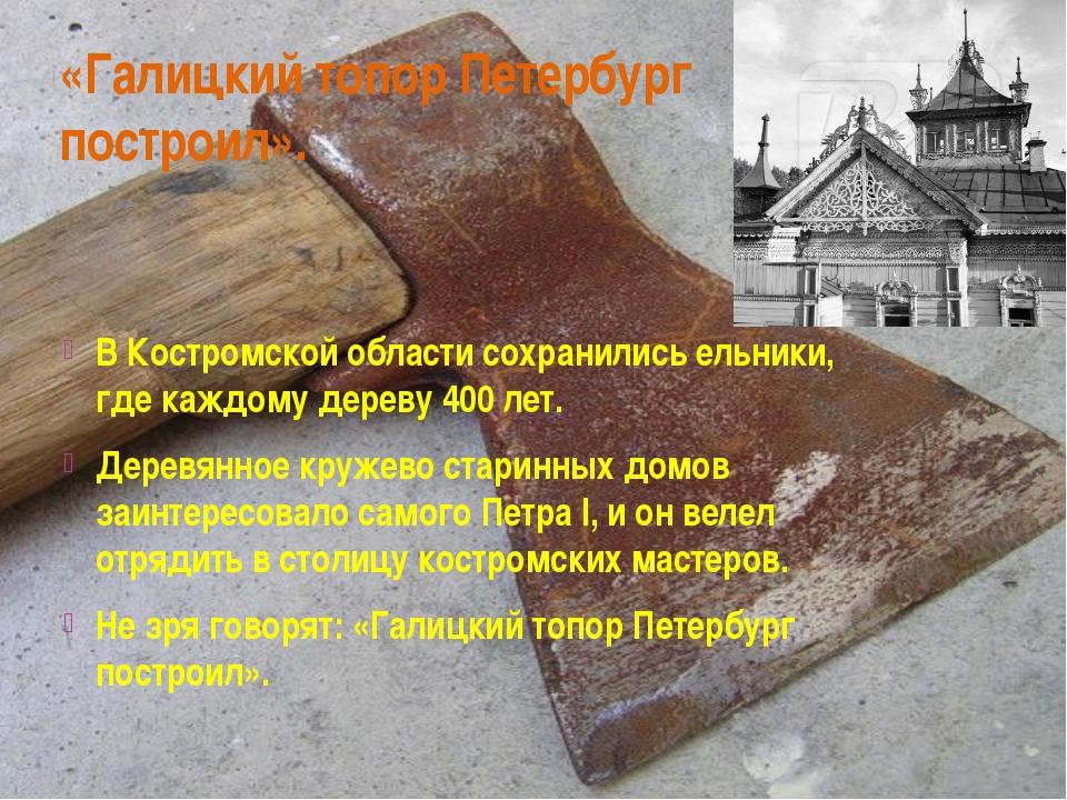 «Галицкий топор Петербург построил». В Костромской области сохранились ельник...