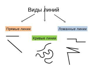 Виды линий Прямые линии Кривые линии Ломанные линии