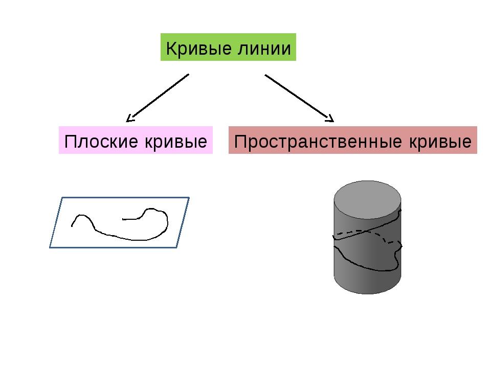 Кривые линии Плоские кривые Пространственные кривые