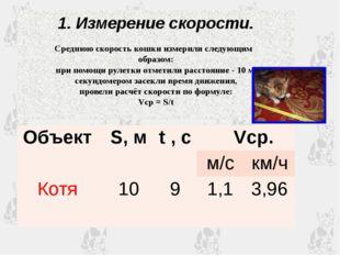 1. Измерение скорости. Среднюю скорость кошки измерили следующим образом: при