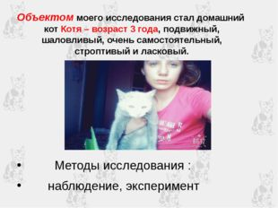Объектом моего исследования стал домашний кот Котя – возраст 3 года, подвижны