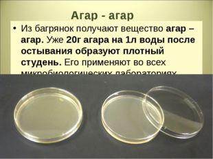 Агар - агар Из багрянок получают вещество агар – агар. Уже 20г агара на 1л во