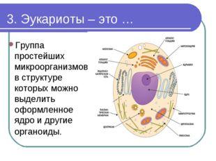 3. Эукариоты – это … Группа простейших микроорганизмов в структуре которых мо