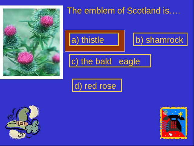 a) thistle The emblem of Scotland is…. b) shamrock c) the bald eagle d) red r...