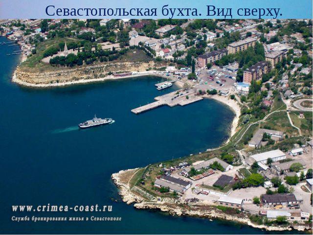 Севастопольская бухта. Вид сверху.