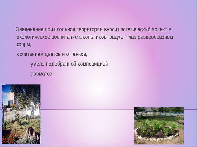 Озеленение пришкольной территории вносит эстетический аспект в экологическое...