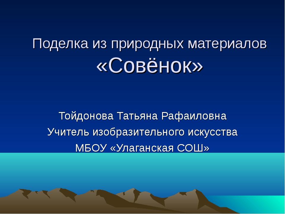 Поделка из природных материалов «Совёнок» Тойдонова Татьяна Рафаиловна Учител...