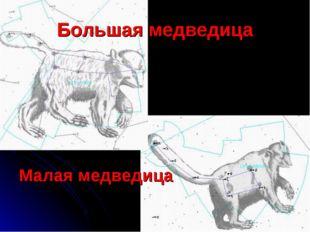Большая медведица Малая медведица