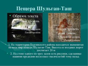 Пещера Шульган-Таш 1. На территории Бурзянского района находится знаменитая н