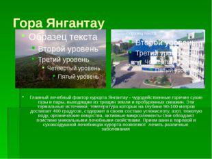 Гора Янгантау Главный лечебный фактор курорта Янгантау - чудодейственные горя