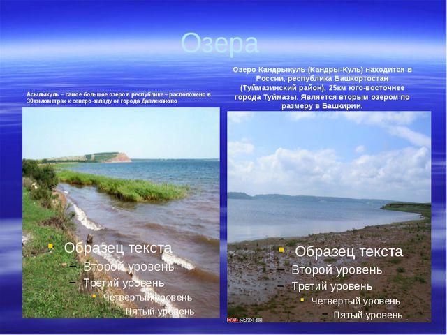 Озера Асылыкуль – самое большое озеро в республике – расположено в 30 километ...