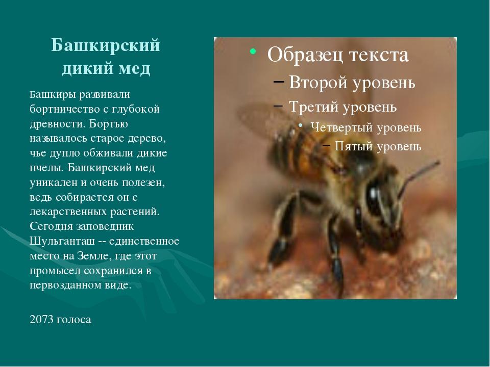Башкирский дикий мед Башкиры развивали бортничество с глубокой древности. Бор...