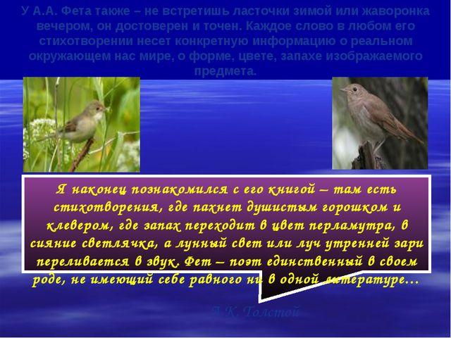 У А.А. Фета также – не встретишь ласточки зимой или жаворонка вечером, он дос...