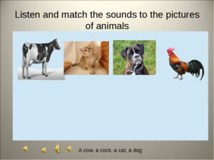 Divide animals into two groups Domestic animals Wild animals
