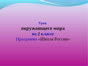 Урок окружающего мира во 2 классе Программа «Школа России»