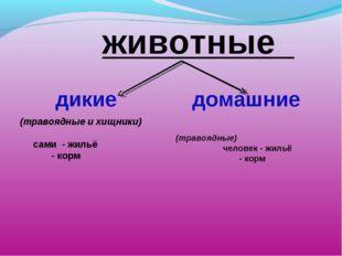 животные дикие домашние  (травоядные и хищники)  сами - жильё - корм (тр