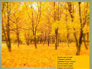 Время года отгадай Собирают урожай, Грибники в леса спешат, Листья жёлтые ле