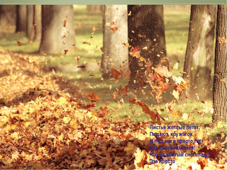 Листья желтые летят, Падают, кружатся, И под ноги просто так, Как ковер ложат...