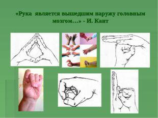 «Рука является вышедшим наружу головным мозгом…» - И. Кант