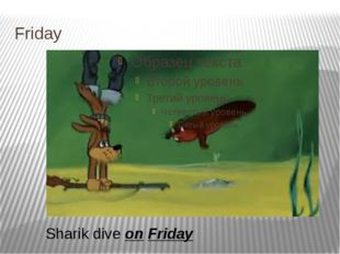 Friday Sharik dive on Friday
