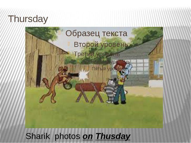 Thursday Sharik photos on Thusday
