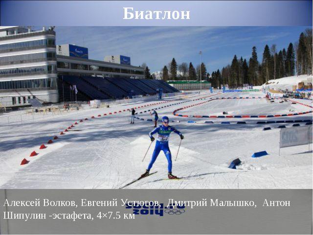 Алексей Волков,Евгений Устюгов, Дмитрий Малышко, Антон Шипулин-эстафета,...