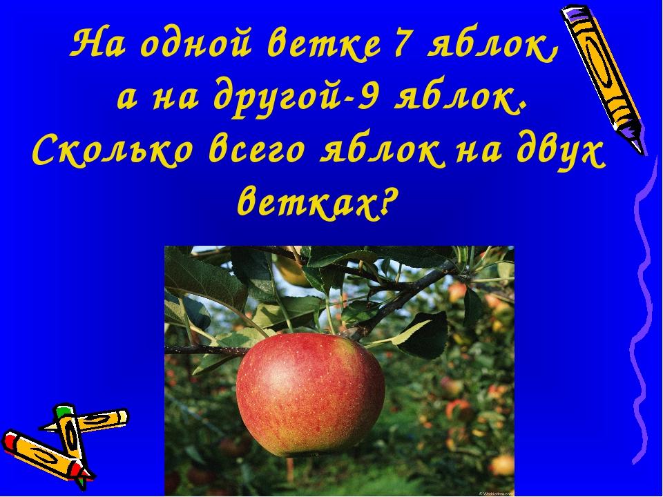 На одной ветке 7 яблок, а на другой-9 яблок. Сколько всего яблок на двух вет...