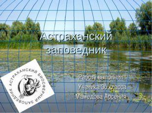 Астраханский заповедник Работу выполнил : Ученика 3б класса Мамедова Арсения .