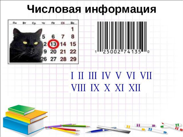 Числовая информация