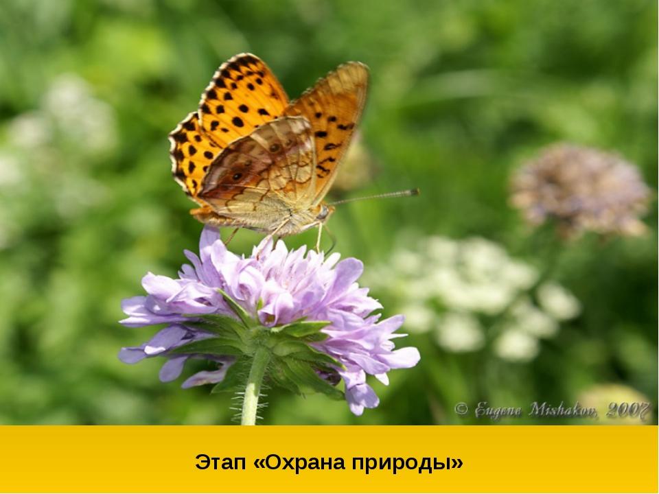 Этап «Охрана природы»