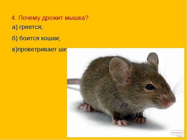 4. Почему дрожит мышка? а) греется; б) боится кошки; в)проветривает шкурку.