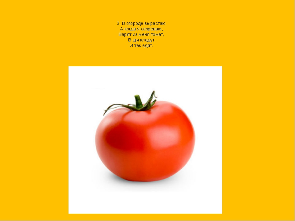 3. В огороде вырастаю А когда я созреваю, Варят из меня томат, В щи кладут...