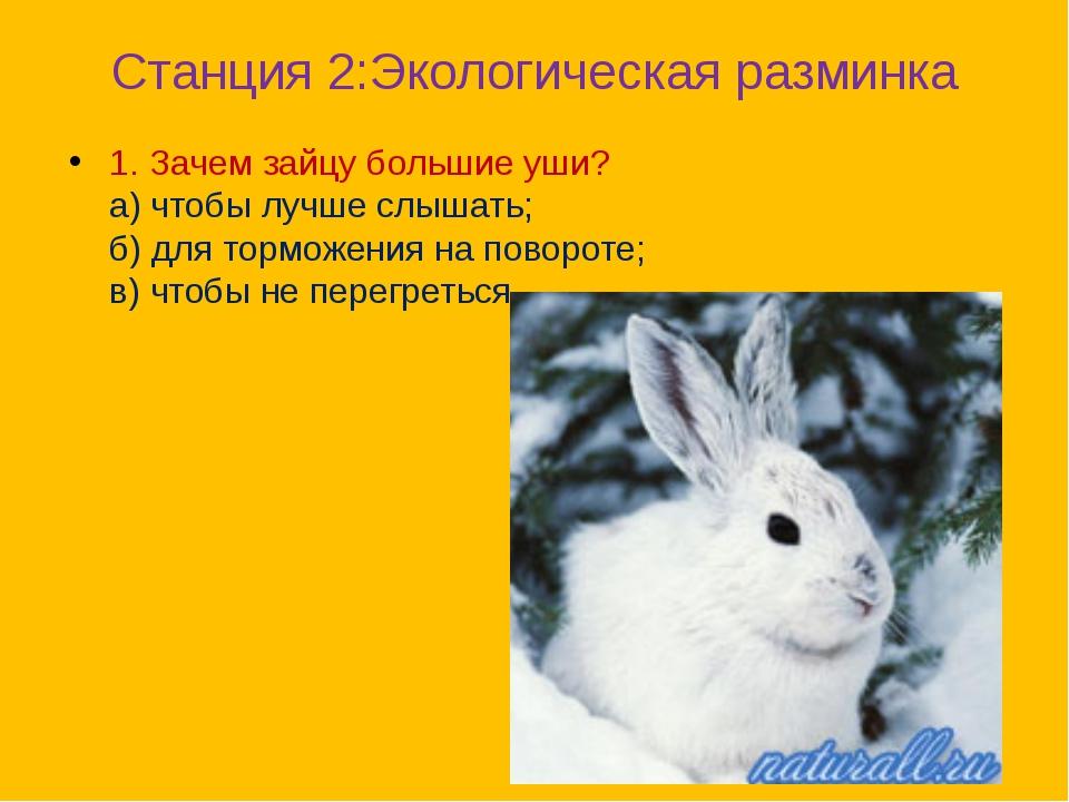 Станция 2:Экологическая разминка 1. Зачем зайцу большие уши? а) чтобы лучше с...