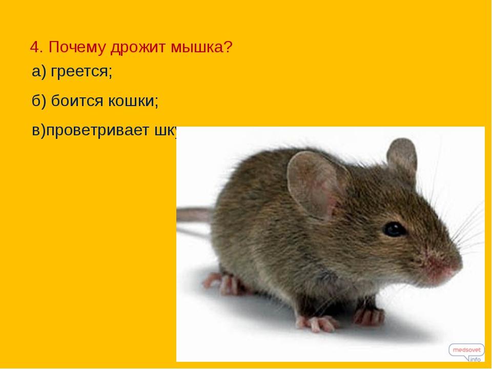 Почему дёргается мышка на компьютере