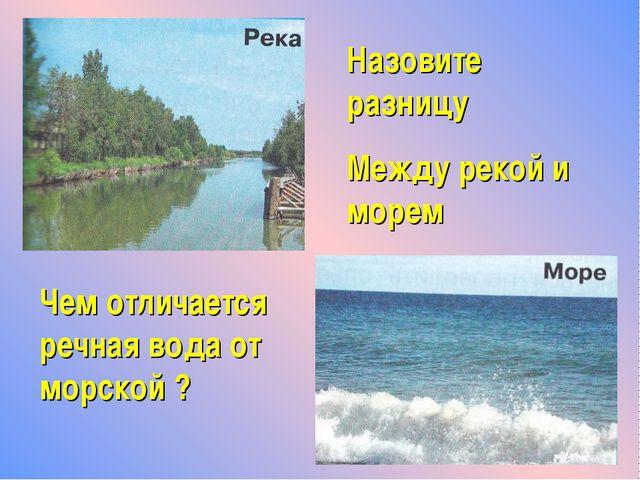 Назовите разницу Между рекой и морем Чем отличается речная вода от морской ?