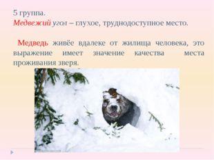5 группа. Медвежий угол – глухое, труднодоступное место. Медведь живёе вдалек