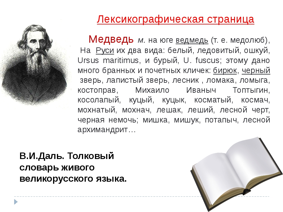 Лексикографическая страница Медведь м. на югеведмедь(т. е. медолюб), На Ру...