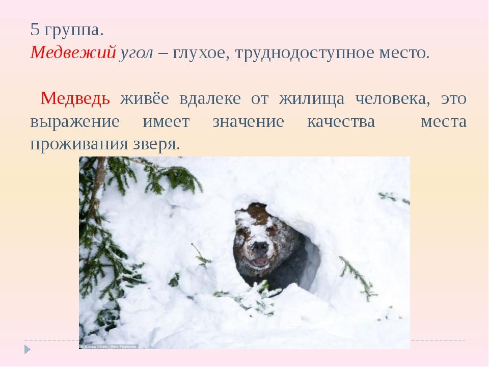5 группа. Медвежий угол – глухое, труднодоступное место. Медведь живёе вдалек...