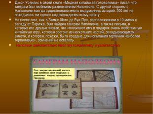 Джон Уолилис в своей книге «Модная китайская головоломка» писал, что танграм