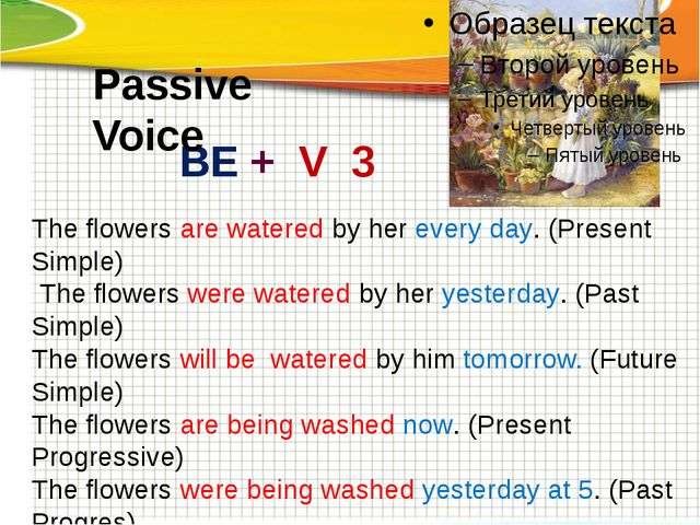 The flowers are watered by her every day. (Present Simple) The flowers were...