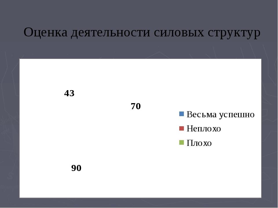 Оценка деятельности силовых структур