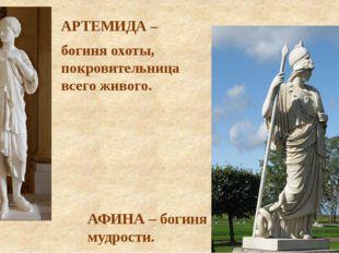 АРТЕМИДА – богиня охоты, покровительница всего живого. АФИНА – богиня мудрости.