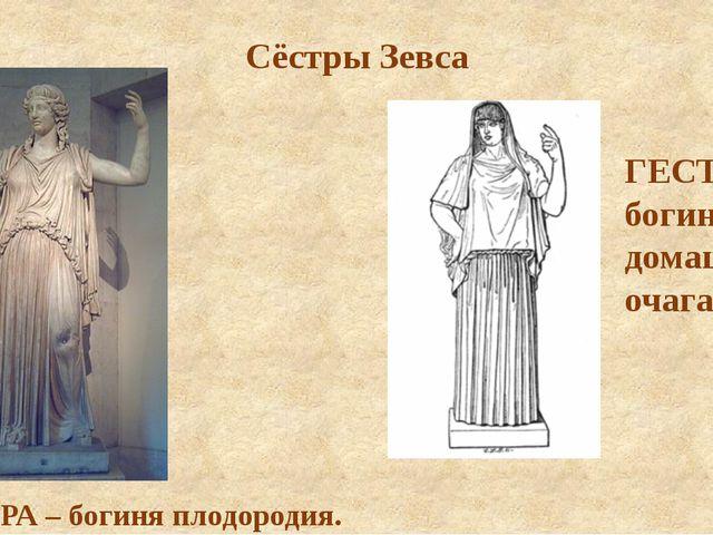 Сёстры Зевса ДЕМЕТРА – богиня плодородия. ГЕСТИЯ – богиня домашнего очага.