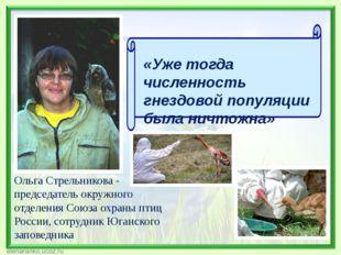 Ольга Стрельникова - председатель окружного отделения Союза охраны птиц Росси