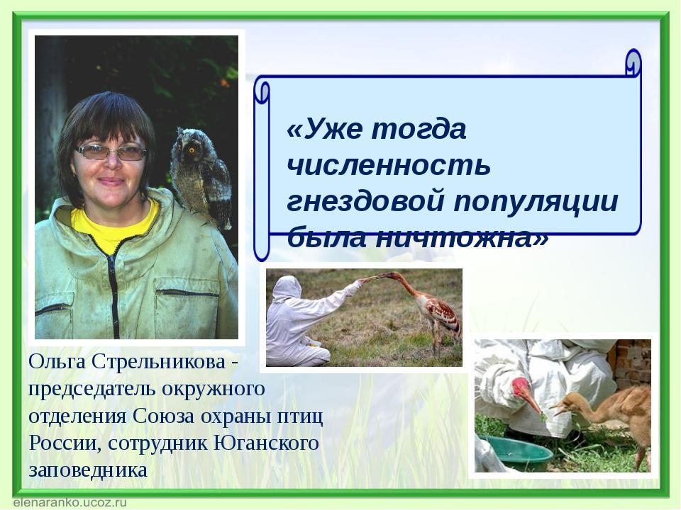 Ольга Стрельникова - председатель окружного отделения Союза охраны птиц Росси...