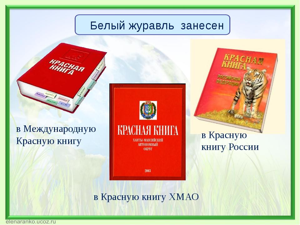 в Международную Красную книгу в Красную книгу России в Красную книгу ХМАО Бел...