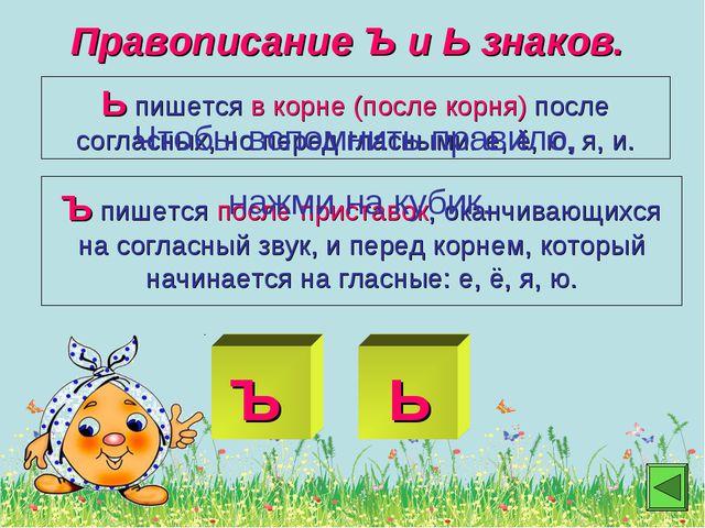 Правописание Ъ и Ь знаков. Ь пишется в корне (после корня) после согласных,...